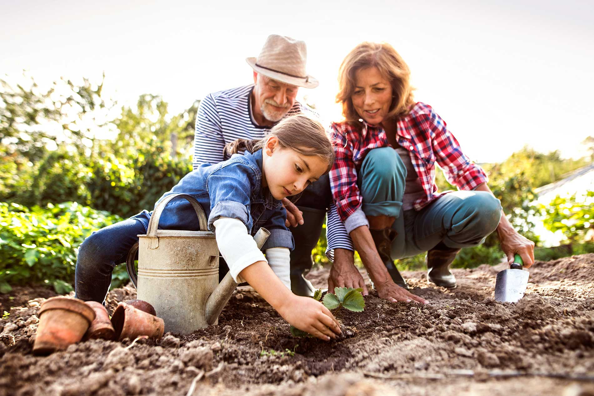Checklist-for-Landscaping-twinriverstreeservice
