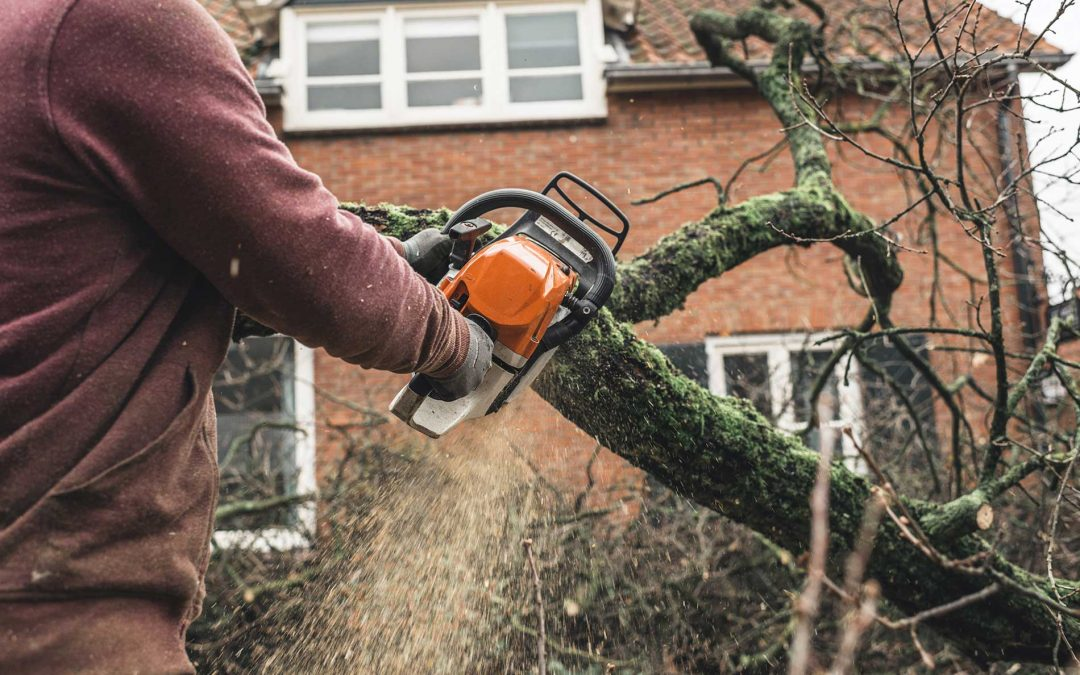 Featured-pruning-for-safety