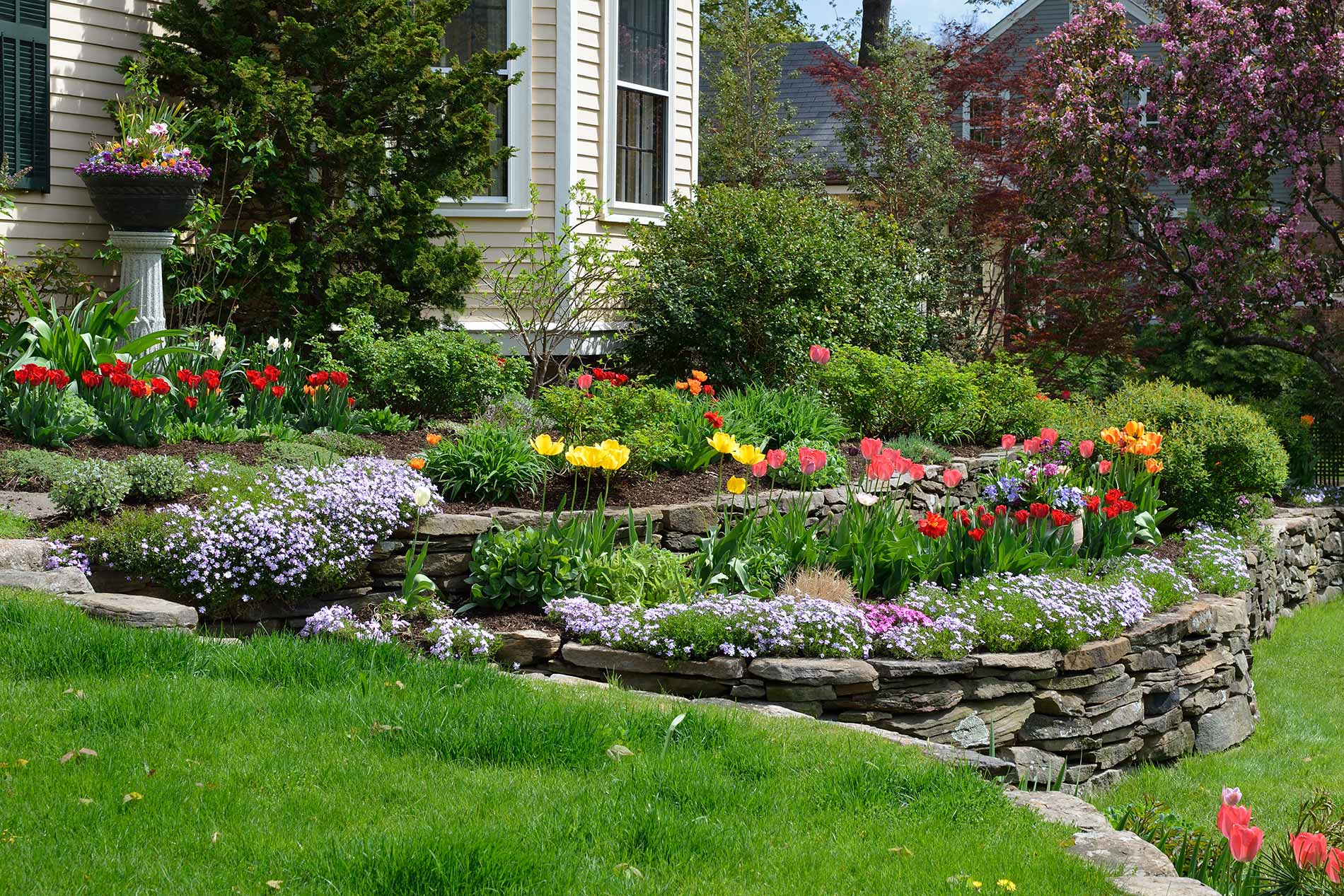 Professional-Landscaping-Services-twinriverstreeservice